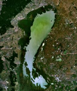 Satellitenaufnahme des Neusidler Sees